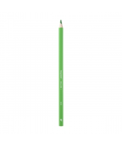 Colored Pencil Bruynzeel Super 1Pc L.Green 60516960
