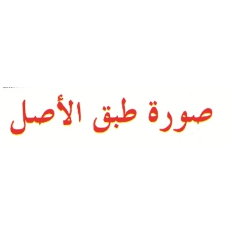 Stamp Shiny Nar-003 Pre-Inked Arabic Copy Original