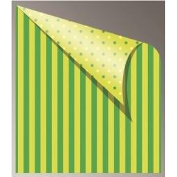 CARDBOARD JANSEN DOTS STRIPES 50X70 300G 305320.50 MINT GREEN