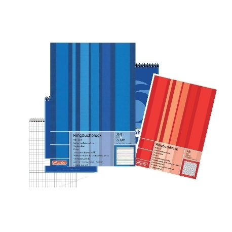 Writing Pad Herlitz A4 Squared 100Sh Punched 733436